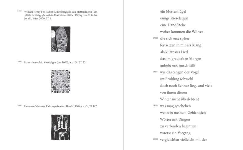 """Brugger Literaturtage 2016: Franz Dodel """"Nicht bei Trost"""", Edition Korrespondenzen"""